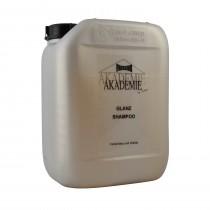 Friseur Akademie Glanz Shampoo 5000ml